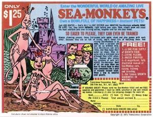 sea-monkeys