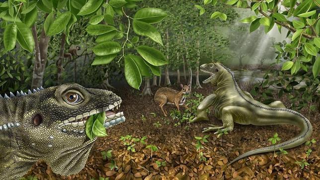 king-lizard--644x362