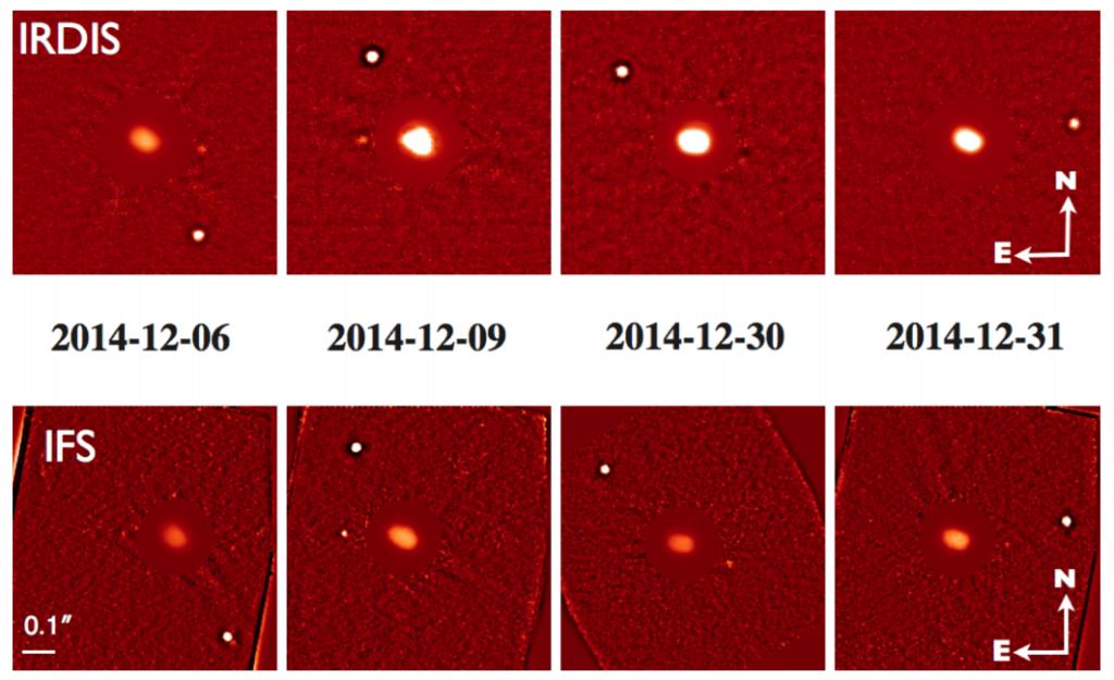 Imágenes procesadas de IRDIS e IFS del sistema triple de asteroides (130) Elektra. El nuevo satélite S/2014 (130) 1 fue detectado tanto en las imágenes de IRDIS como en las de IFS en la mayoría de las épocas.